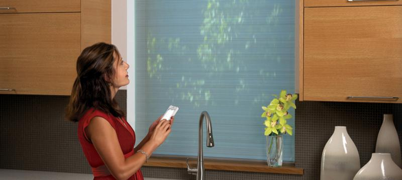 Motorization Systems for Blinds & Shades