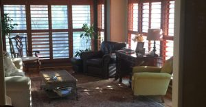 Stained Shutters or Painted Shutters