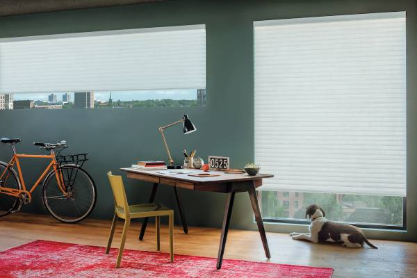 Cellular Shades from Hunter Douglas near Birmingham, Alabama (AL) including Sonnette® Cellular Roller Shades